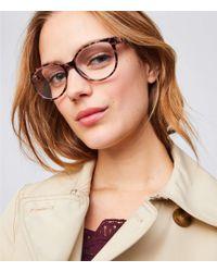 LOFT - Cateye Reading Glasses - Lyst