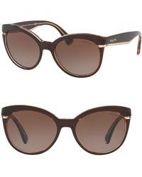 Pink Pony - 55mm Cat-eye Sunglasses - Lyst