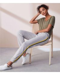 Lou & Grey | Sundry Trim Basic Sweatpants | Lyst