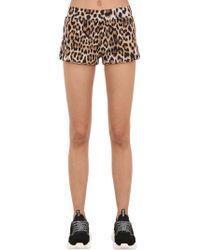 Moschino - Shorts De Jersey Con Estampado Animal - Lyst