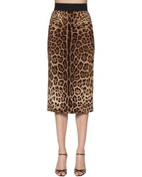Dolce & Gabbana - Leopard Printed Stretch Cady Pencil - Lyst