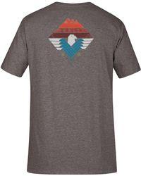 Hurley - Surfin Bird Graphic-print T-shirt - Lyst