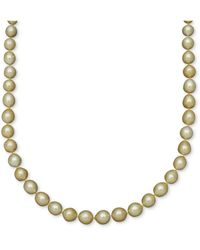 Macy's - Pearl Necklace, 14k Gold Golden South Sea Pearl Oval Strand - Lyst