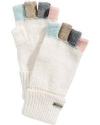 Steve Madden - Colorblocked Fingerless Gloves - Lyst