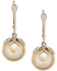 Macy's - Cultured Golden South Sea Pearl (10mm) Drop Earrings In 14k Gold - Lyst