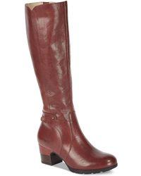 Jambu - Chai Water-resistant Tall Boots - Lyst