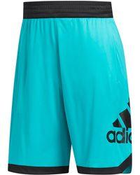 adidas - Colorblocked Shorts - Lyst