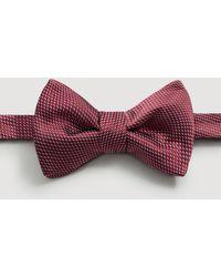 Mango - Micro-print Silk Bow Tie - Lyst