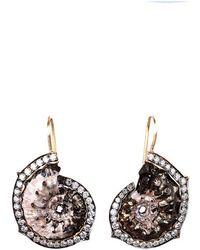 Sylva & Cie - Ammonite Shell Earrings - Lyst