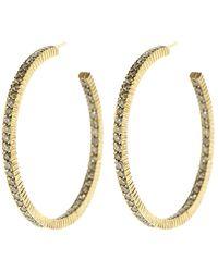 b2ec068f843 Lilah Cognac Diamond Pave Hoop Earrings
