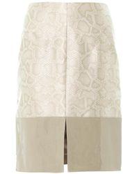 Richard Nicoll - Snake-effect Contrast Panel Skirt - Lyst
