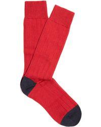 Pantherella | Scott Nichol Oxford Ribbed-knit Socks | Lyst