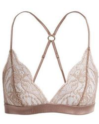 Fleur Of England - - Lace Trimmed Soft Cup Triangle Bra - Womens - Light Brown - Lyst