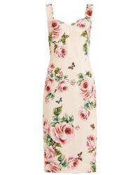 Dolce & Gabbana - Sweetheart-neckline Rose-print Crepe Dress - Lyst