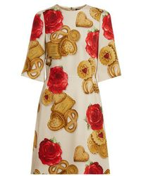 Dolce & Gabbana - Biscotti And Rose-print Cady Dress - Lyst