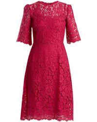 Dolce & Gabbana - Cordonetto-lace Midi Dress - Lyst
