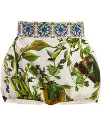 Dolce & Gabbana - Majolica And Pepper Print Cotton Shorts - Lyst