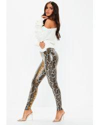 9e5d9db0282307 Missguided - Brown Snake Print Wet Look Leggings - Lyst