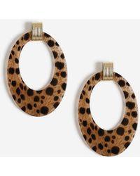 Miss Selfridge - Leopard Oval Earrings - Lyst