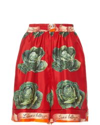 Dolce & Gabbana - High Waisted Cabbage Print Shorts - Lyst