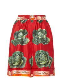 Dolce & Gabbana - High Waisted Cabbage Print Shorts - Lyst