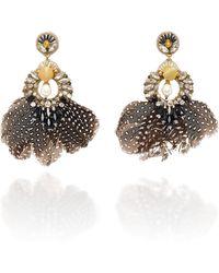 Ranjana Khan - Carambola Pearl And Feather Gold-tone Drop Earrings - Lyst
