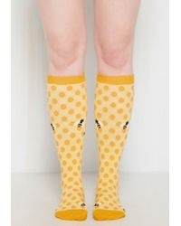 Sock It To Me - My Honey's On You Socks - Lyst