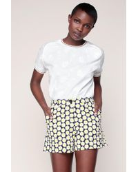Love Moschino - Short Short - Lyst