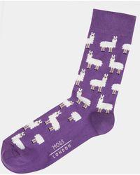 Moss London - Purple Llama Socks - Lyst