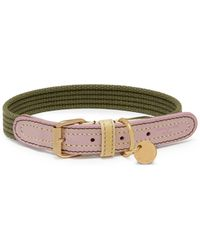 Mulberry - 2cm Ruralist Collar In Khaki, Lilac And Lemon Leather And Striped Webbing - Lyst