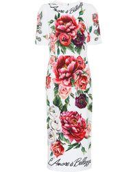 Dolce & Gabbana - Printed Stretch-cady Midi Dress - Lyst