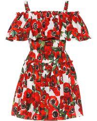 Dolce & Gabbana - Floral Cotton Poplin Minidress - Lyst
