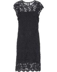Velvet - Ally Cotton Lace Dress - Lyst