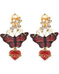 Dolce & Gabbana - Butterfly Earrings - Lyst