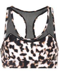 The Upside - Chrissy Leopard-printed Sports Bra - Lyst