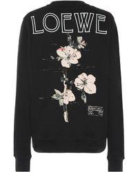 Loewe - Printed Cotton Sweatshirt - Lyst