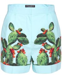 Dolce & Gabbana - Exclusive To Mytheresa. Com – Printed Cotton Shorts - Lyst