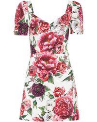 Dolce & Gabbana - Floral Silk-blend Dress - Lyst