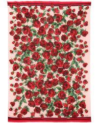 Dolce   Gabbana - Foulard en cachemire mélangé et imprimé - Lyst c6ccf699885