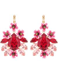Dolce & Gabbana - Crystal And Resin Floral Earrings - Lyst