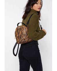 Nasty Gal - Want We Choose Zoo Zebra Backpack - Lyst
