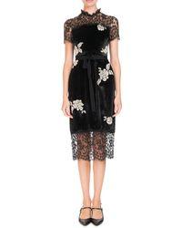 Erdem - Keni Short-sleeve Lace & Velvet Shift Dress W/ Pearly Roses - Lyst