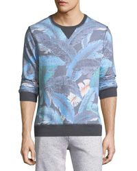Sol Angeles - Lanai Leaf Pullover Sweater - Lyst