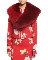 Diane von Furstenberg   Bicolor Fox Fur Collar   Lyst