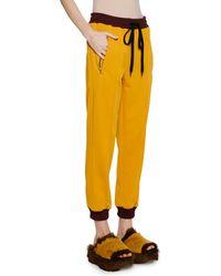 Marni - Pull-on Drawstring-waist Bunny-logo Techno Jersey Track Pants - Lyst