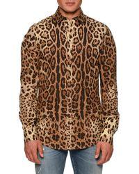 Dolce & Gabbana - Leopard-print Poplin Shirt - Lyst