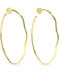 Ippolita - Classico Squiggle 18-karat Gold Hoop Earrings Gold One Size - Lyst