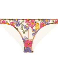 I.D Sarrieri - Wonderland Delights Embroidered Stretch-tulle Briefs - Lyst
