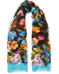 Dolce & Gabbana - Frayed Floral-print Modal And Cashmere-blend Scarf - Lyst