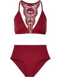 I.D Sarrieri - Elite Chantilly Lace-trimmed Bikini - Lyst